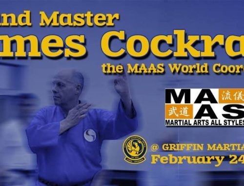 Martial Arts Spirit Combat Aiki JuJitsu Seminar Sweden